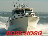 Boss Hogg Sportfishing