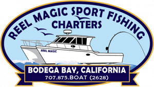 Reel Magic Sport Fishing Charters